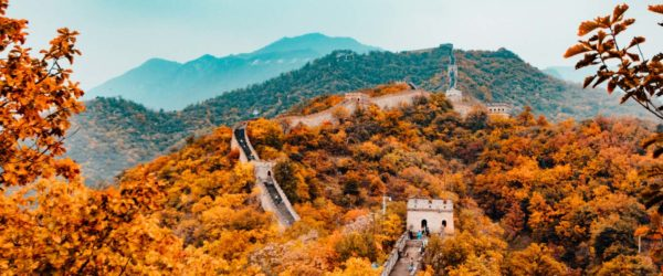 Study History at the Great Wall of China with Worldwide Navigators