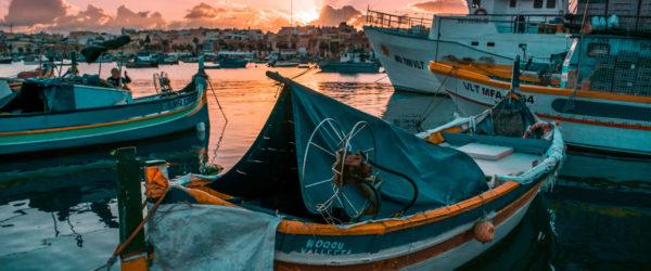 Study Environmental Sciences in Malta with Worldwide Navigators